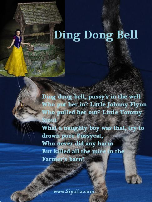 Bell Dong