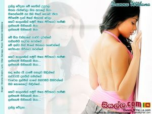 Dunnu Wedana Me Nethin Udurala Sinhala Lyric