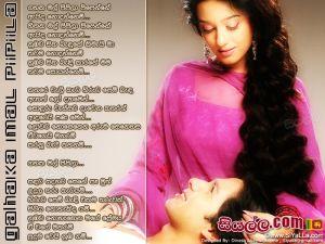 Gahaka Mal Pipila Pipenne Eida Nodannemi Sinhala Lyric