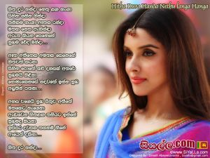 Hitha Dura Handa Nethu Langa Hanga Sinhala Lyric