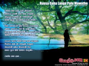 Russa Gaha Langa Palu Mawathe Sinhala Lyric