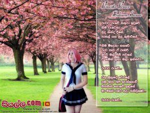 Ruwata Ruwe Sakura Iwure Hima Watena Sinhala Lyric