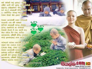 Bo Maluwe  Mal Suwandaka Petali Sinhala Lyric
